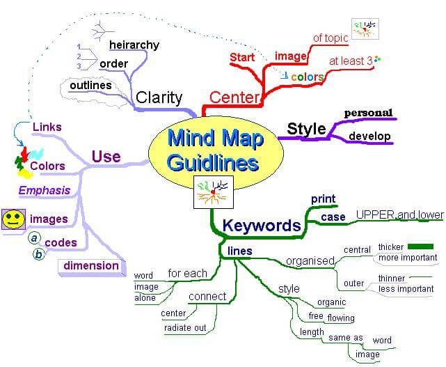 解剖生理とマインドマップ