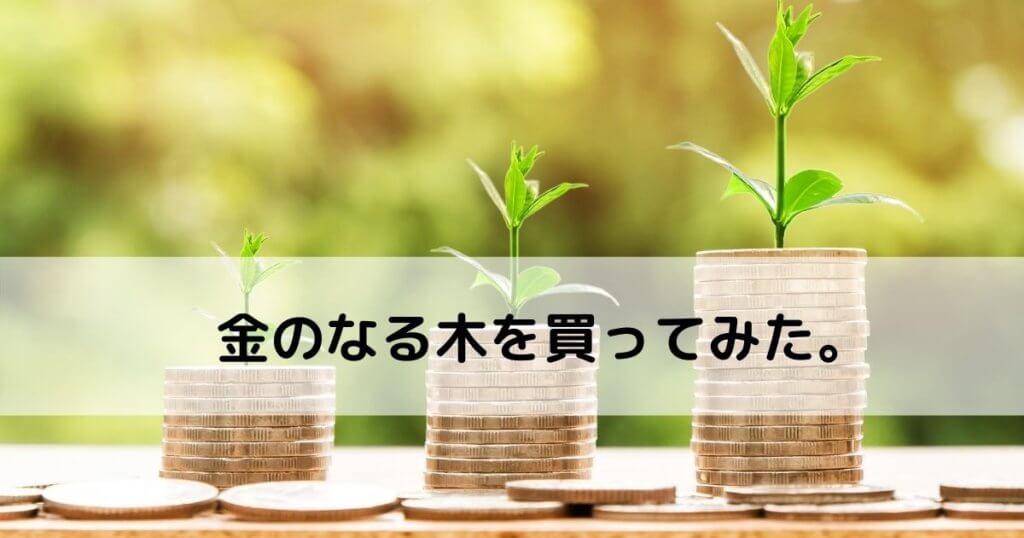 介護の仕事】低所得に悩む人必見?【10日で不労所得1万円を手にした話】